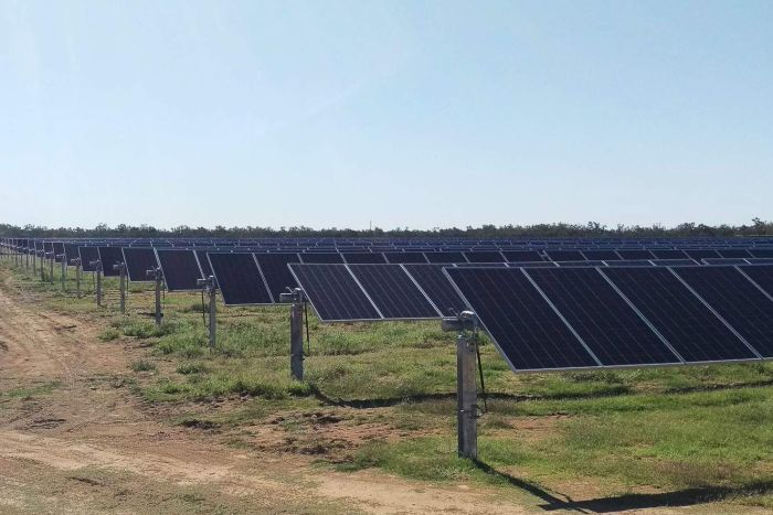 Barcaldine solar farm panels in rows
