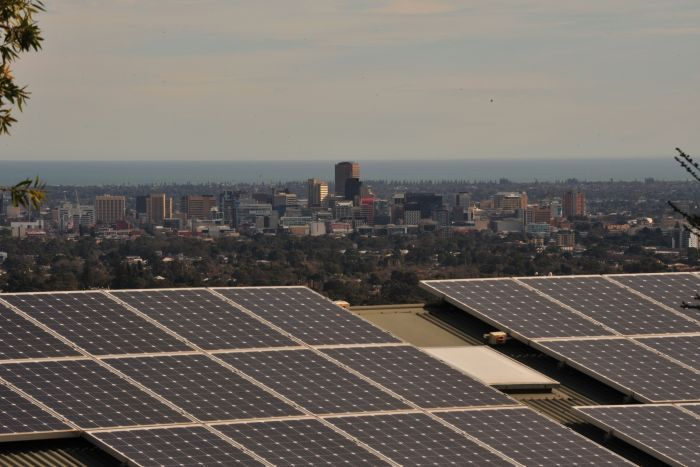 Solar panels with view across Adelaide